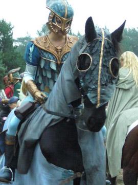 http://www.eliannevandorp.nl/files/gimgs/11_ridders-5.jpg